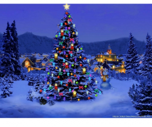 Holiday Craft & Gift Show - Stillwater