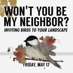 Won't You Be My Neighbor? Inviting Birds to Your Landscape