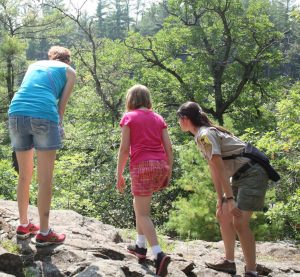 Young Scientists Look for Lichens