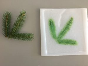 Fused Glass: Implementing Nature