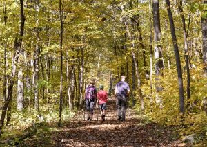 Fall Foliage Hike- Sandrock Cliffs Trail