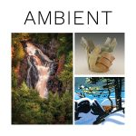 """Ambient"" Opening Reception"