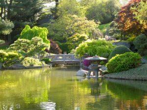 Canceled: Japanese Zen Gardens