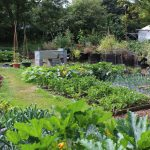 Easy Vegetable Garden Design