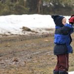 Preschool Story Time: Maple Syrup Season