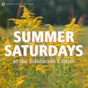Summer Saturdays at the Education Center