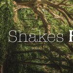 Shakes Faire