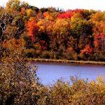 16th Annual River Road - Hwy 87 Ramble