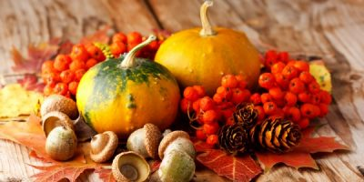Fall Fare at its Best