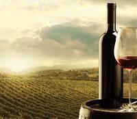 ARGENTINE WINE DINNER