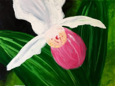 Paint-Sip-Nosh! | 'Lady Slipper'