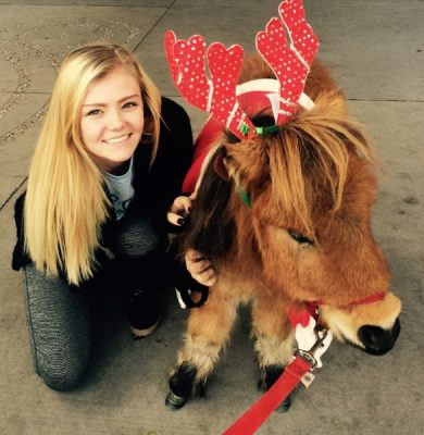 Read to a Mini Horse at the Stillwater Public Library