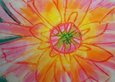 Georgia O'Keeffe BIG Flower Drawings with WBCA