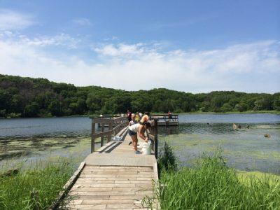 Family Pond Dipping at Long Lake