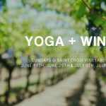 Yoga in the Vineyard!
