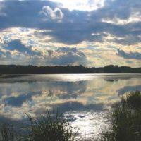 Lake Elmo Park Reserve